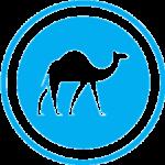 Camel Safari Dahab